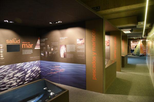 inauguracin-de-la-remodelacin-del-espacio-expositivo-los-tesoros-de-la-tierra-en-el-museo-de-las-ciencias_24164733237_o