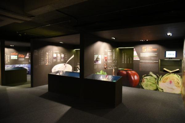 inauguracin-de-la-remodelacin-del-espacio-expositivo-los-tesoros-de-la-tierra-en-el-museo-de-las-ciencias_38311706084_o