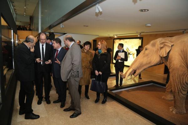 inauguracin-de-la-tercera-fase-del-museo-de-paleontologa_24743162557_o